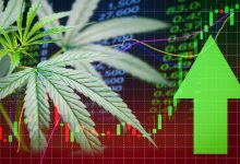 Photo of Should You Invest in Cannabis ETFs?